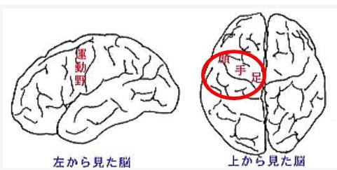 脳内出血の個所